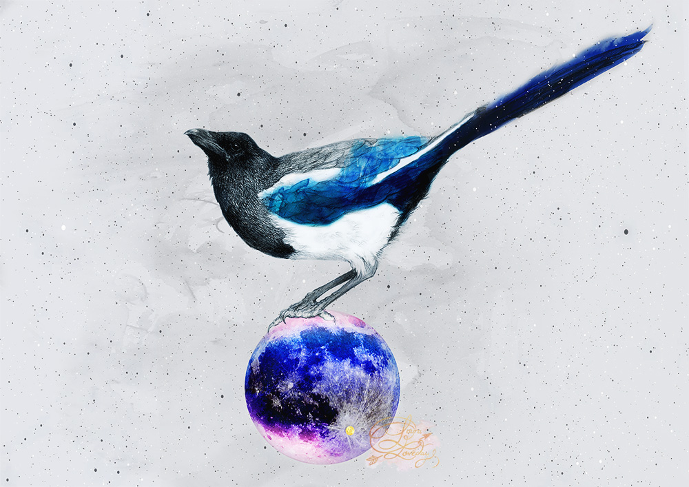 tycho laura loveday magpie on the moon art