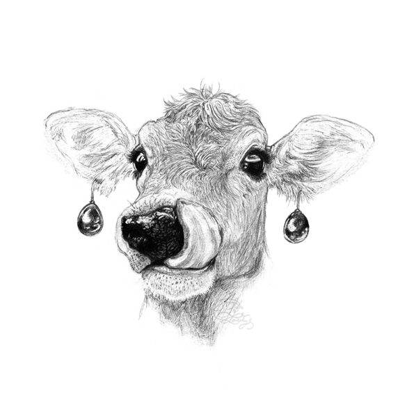 cow with a pearl earring jersey cow art laura loveday