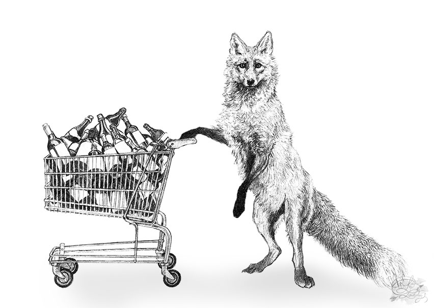 fox at the supermarket version 2 laura loveday redraw